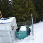 Service grup electrogen iarna