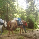 Transport piese de schimb in zona inaccesibila montana